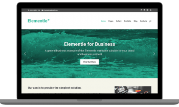 Elementle Business Wireframe
